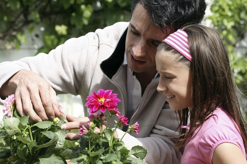 Building A Summer Garden With Kids The Article Home