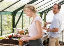 buying-seeds-for-your-garden-on-the-net