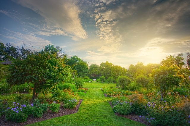 The Different Types Of Gardens | The Article Home