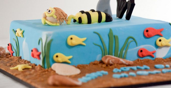 cake decorating Sugarcraft