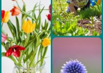 Fast And Simple Horticulture Tips From The Pros