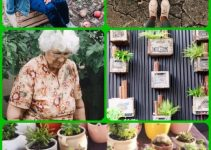 Success With Organic Horticulture: How To Grow A Healthy Garden