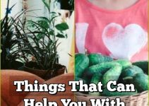 Things That Can Help You With Organic Horticulture