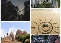 A Smart Online Search Reveals Cheap Travel Deals