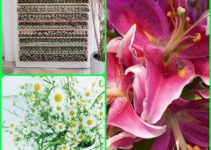 Great Tips For Anyone Who Loves Gardening