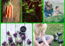 Handy Tips For Learning To Garden Organically