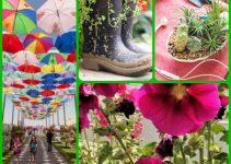How To Grow A Beautiful Organic Garden