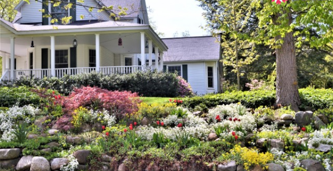 What Type of Gardening Is Right For You?