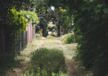 Gardening Hacks – Tips and Tricks