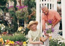 Tips On Garden Flowers Ideas